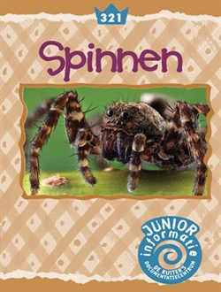 Spinnen (Junior)